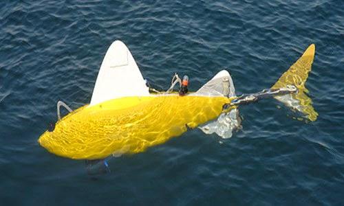 Ψάρι- ρομπότ θα κάνει βόλτες στο λιμάνι του Πειραιά!