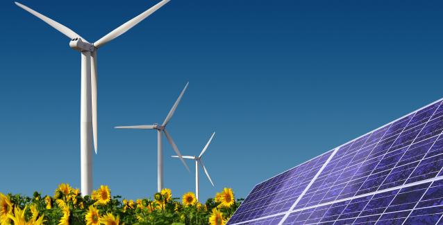 """Κλιματική αλλαγή – WWF: Οι ανανεώσιμες πηγές ενέργειας και ο ρόλος της εκπαίδευσης"""""""