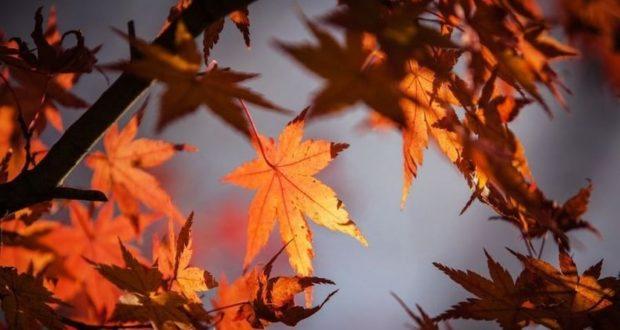 Και τυπικά φθινόπωρο από τα χαράματα Κυριακής
