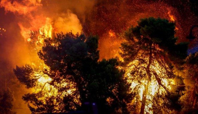 Πολύ υψηλός κίνδυνος πυρκαγιάς σήμερα σε Αττική