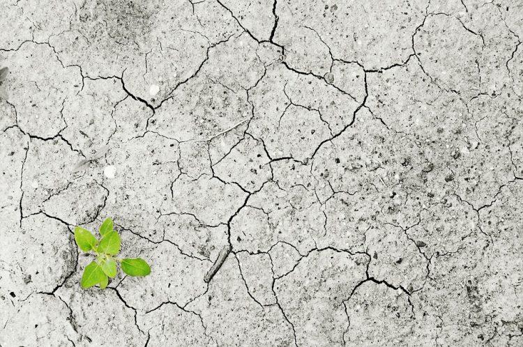 """Η παγκόσμια αύξηση της θερμοκρασίας θα """"παγώσει"""" τις οικονομίες των φτωχών χωρών"""