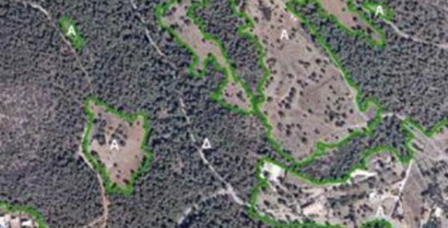 Δασικοί χάρτες: Πώς θα σώσετε χωράφια και επιδοτήσεις