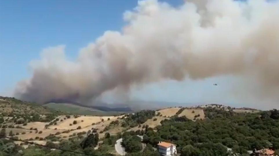 Εύβοια: Μεγάλη πυρκαγιά σε δασική έκταση - Εκκενώθηκε χωριό