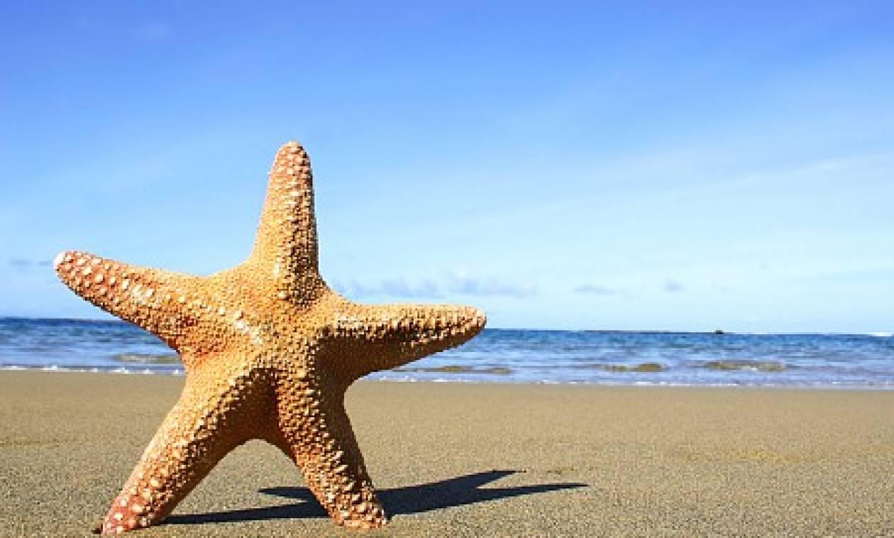 ΟΑΕΔ Κοινωνικός τουρισμός: Ποιοί είναι οι πιο δημοφιλείς προορισμοί