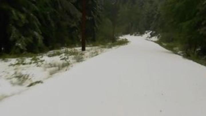 Σχέδιο για την αντιμετώπιση χιονοπτώσεων και παγετών