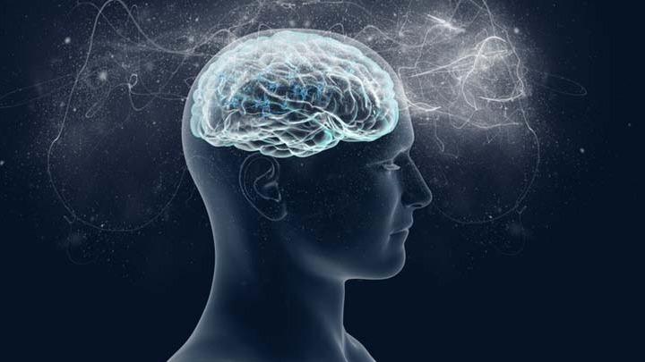 Τελικά με τι ερωτευόμαστε: Με την καρδιά ή με τον εγκέφαλο;