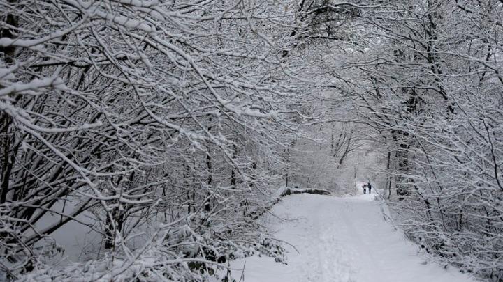 Κακοκαιρία «Μήδεια»: Χιόνια σε πολλές περιοχές της χώρας